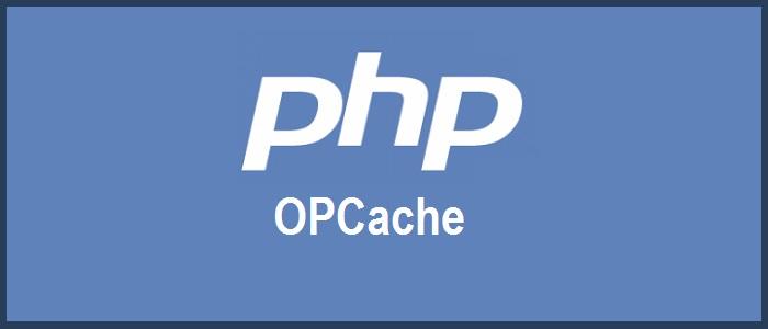 Plesk Woocommerce OPCache Setting